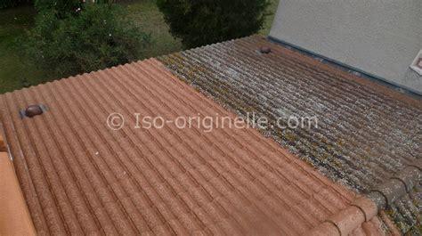 nettoyage tuile beton apres attaque lichen iso originelle
