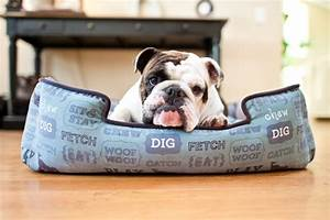 The best dog beds for bulldogs for Best dog beds for bulldogs