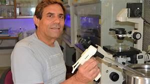 Israeli biomed's novel technology could cure diabetes ...