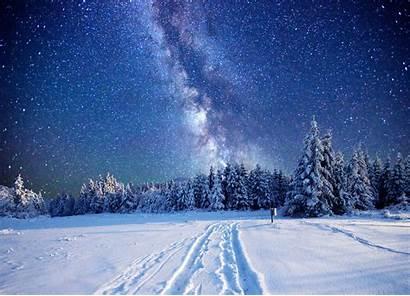 Snow Pine Winter Trees Landscape Stars Desktop