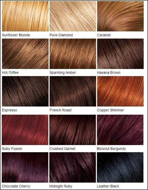 clairol color chart best 25 loreal hair color chart ideas on