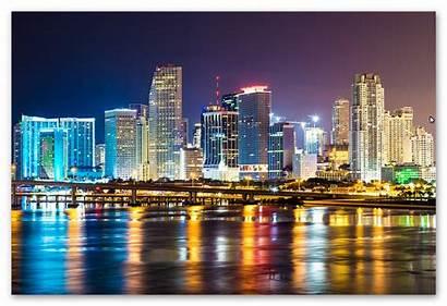 Miami Night Dt Dispose 26a Bit Money