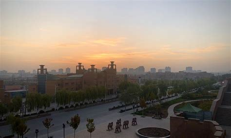 xinjiang region reports   local cases  chinas biggest outbreak  months