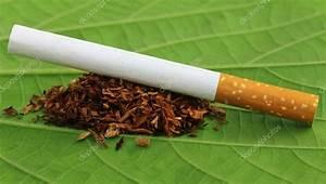 hojas de tabaco de cigarrillos — Fotos de Stock © bdspn74 ...