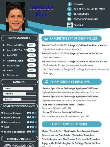 Des Cv Professionnel by T 233 L 233 Charger Un Exemple De Cv Professionnel Cours G 233 Nie