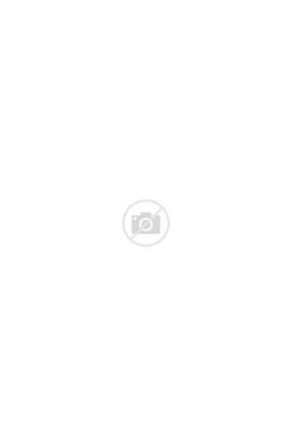 Febreze Candle Lavender Scented Eucalyptus