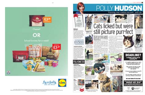 radio cuisine lidl effective exles of digital and print advertising caigns