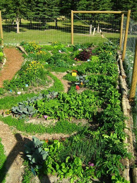 permaculture garden design permaculture