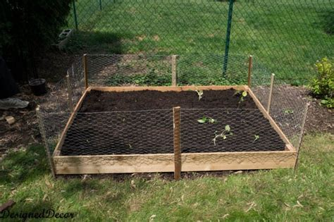 building  raised garden bed designed decor