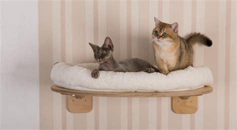 Katzen Wandbrett Selber Bauen by Catwalk Katzen Selber Bauen Katzen Wand Selber Bauen