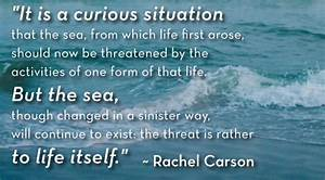 The Ocean's F... Beach Pollution Quotes