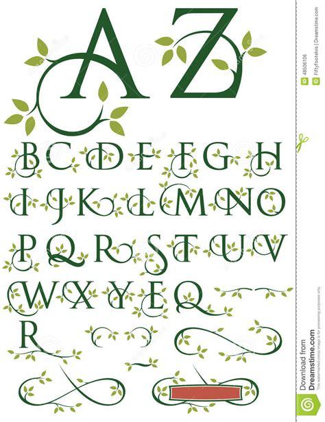 ornate swash alphabet  leaves stock vector image