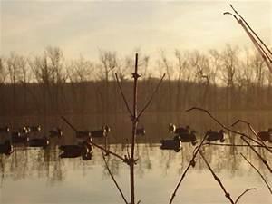 Freshwater Marsh Decoy Spread