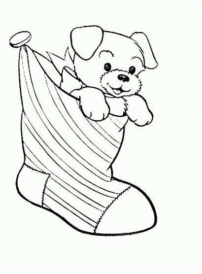 Coloring Puppy Pages Draw