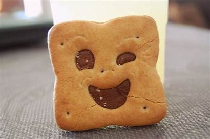 Bn Biscuits Ever Une Maison Mode Took