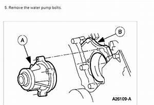Smelling Antifreeze Small Leak  Water Pump Is Leaking