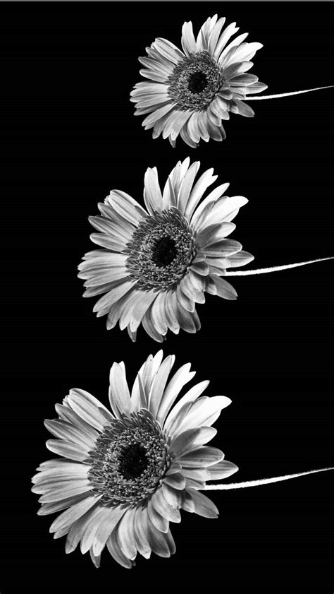 iphone wallpaper tumblr and 183 ① download free cool high