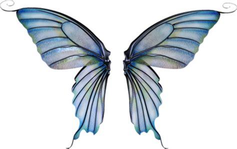 photo gallery fairy wings weneedfun
