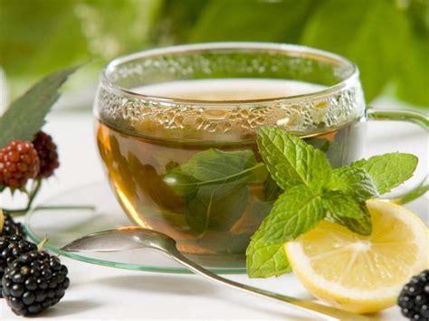 Buy Lemon Balm Tea Benefits Preparation Side Effects