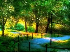 HD Wallpaper Sceneries...Beautiful Nature Scenery Wallpapers