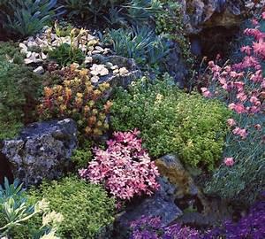 Hang Bepflanzen Bodendecker : steingarten anlegen 116 gestaltungsideen und tipps ~ Lizthompson.info Haus und Dekorationen