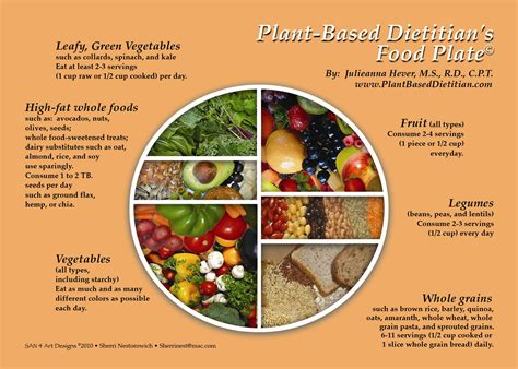guide cuisine going veg with the plant based dietitian plant based