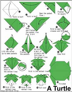 How to Do Origami | How to make origami turtle ...