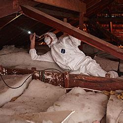 asbestos identification asbestos inspection mornington