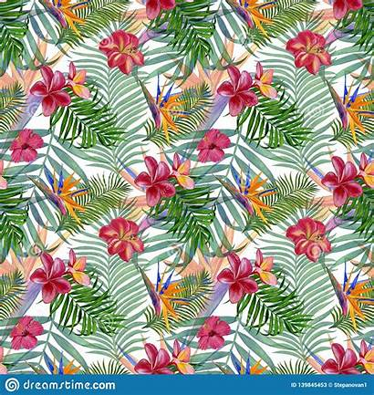 Painting Wrapping Seamless Tropical Watercolor Plants Fabric