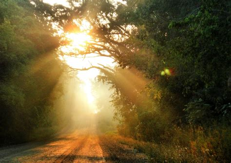 into the light into the light think theology