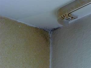 Schimmel Ecke Außenwand : schimmel an der decke was tun haus renovieren ~ Markanthonyermac.com Haus und Dekorationen