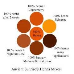 henna mixes henna indigo cassia  fruit juices
