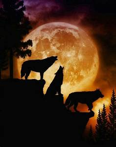Wolves howling at the Moon | Wolves | Pinterest