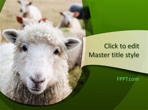 Free Lamb PowerPoint Template - Free PowerPoint Templates