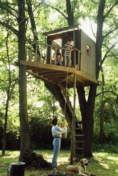 diy tree house plans    childhood  adulthood dream  reality simple tree