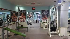 the art of fitness apollo gym the art of fitness kalwa west mumbai gym