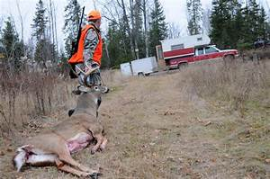 New urgency for hunters to test deer for CWD, lab says ...