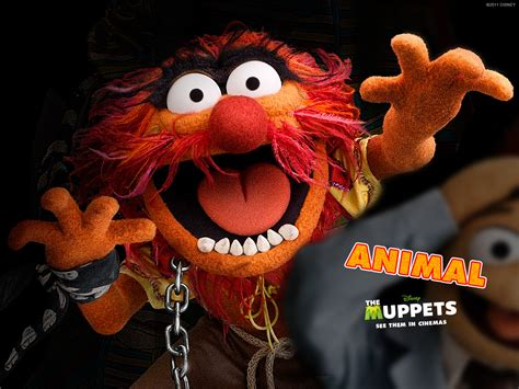 Animal Wallpaper Uk - muppets animal wallpaper wallpapersafari