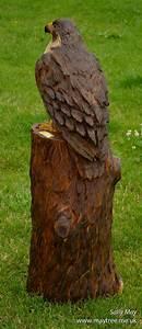 Kettensäge Schnitzen Anfänger : peregrine falcon chainsaw sculpture by sally may holz schnitzen kettens ge objekte ~ Orissabook.com Haus und Dekorationen