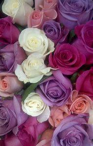 Beautiful Purple Rose Bouquet