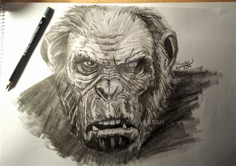 Koba Dawn Of The Planet Of The Apes By Matttrist On Deviantart