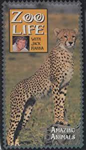 Amazon.com: Zoo Life with Jack Hanna: Amazing Animals ...
