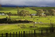 South Island New Zealand Farms