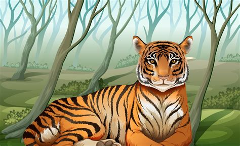 scary tiger   forest   vectors