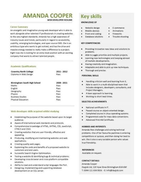 Developer Resume Template by Entry Level Web Developer Resume Template Business