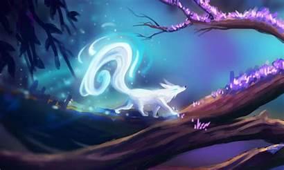 Animal Fox Anime Magic Drawing Draw Ghost