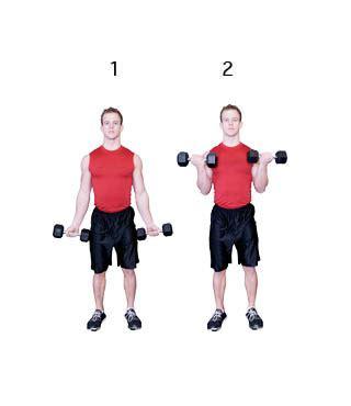 Armspieren trainen met gewichten