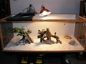 my bearded dragon is not going to the bathroom and when he With how often do bearded dragons go to the bathroom