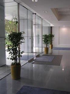 sewa tanaman hias rental tanaman hias gambar tanaman indoor