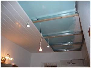 salle de bains faux plafond secouez moi With faux plafond de salle de bain